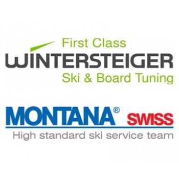 Výsledek obrázku pro logo wintersteiger